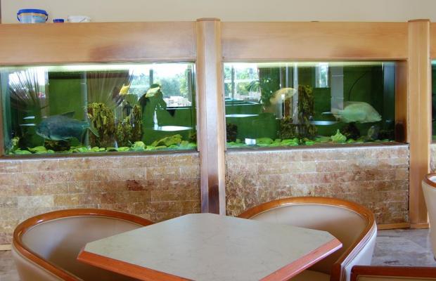 фотографии K. Ilios Hotel & Farming изображение №8