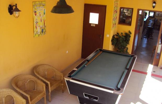 фотографии Elgoni Apartments изображение №4