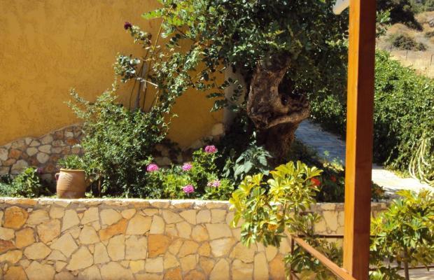 фотографии отеля Elgoni Apartments изображение №3