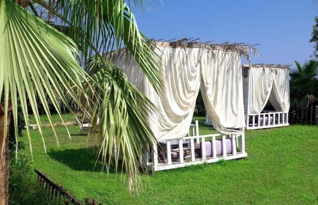 фотографии отеля The Garden Beach Hotel (ex. Ganita Garden Suite; Life Atlibay) изображение №27