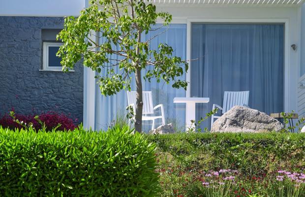 фото Dimitra Beach Resort изображение №70