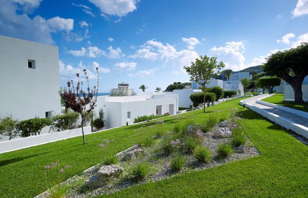 фото отеля Dimitra Beach Resort изображение №57