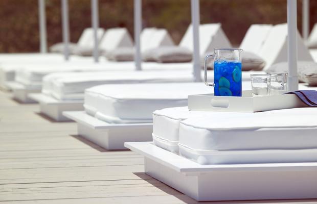 фото отеля Dimitra Beach Resort изображение №25