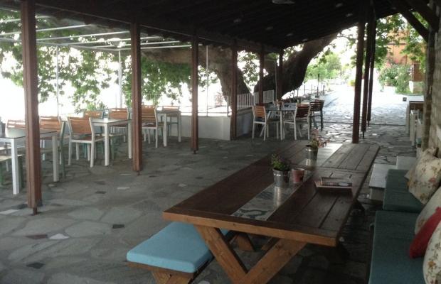 фотографии отеля Olympos Hotel Platamonas изображение №15