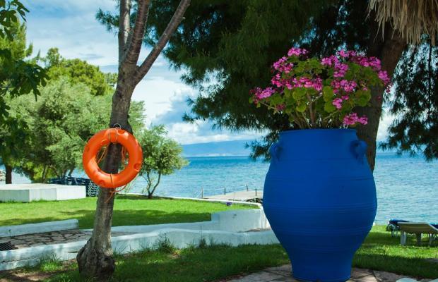 фотографии Corfu Senses (ex. Mare Monte Resort, Adonis Garden) изображение №8