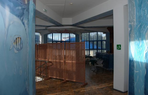 фото отеля Морская Звезда (Starfish) изображение №9