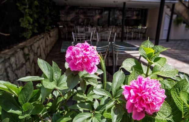 фотографии отеля Эв'Рошель (Evroshel) изображение №19