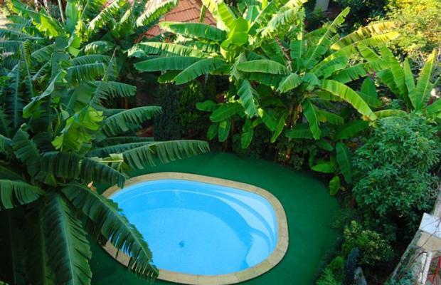 фото Банановый рай (Bananovyj raj) изображение №2