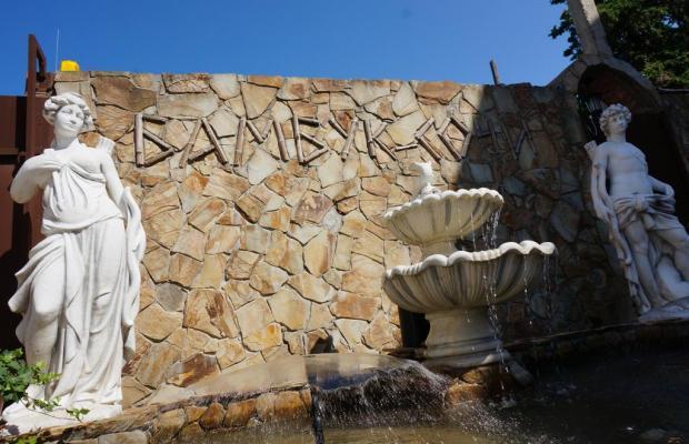 фотографии Бамбук (Bambuk) изображение №40