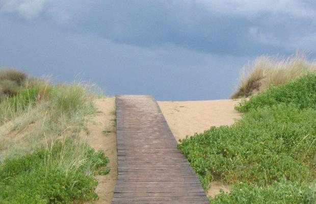 фото отеля Амфибия Бич (Amfibia Beach) изображение №9
