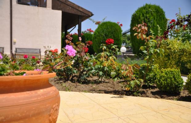 фотографии Вилла Амфора (Villa Amfora; Villa Amphora) изображение №40