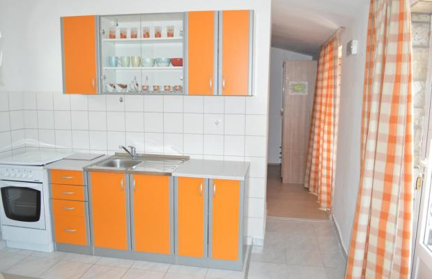 фотографии Villa Mimoza изображение №4