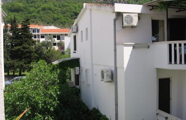 фотографии Villa Jelena изображение №12