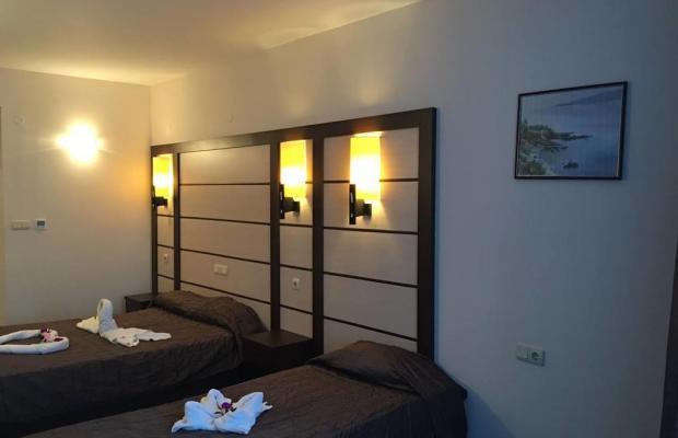 фотографии отеля Сани Бей (Sunny Bay) изображение №3
