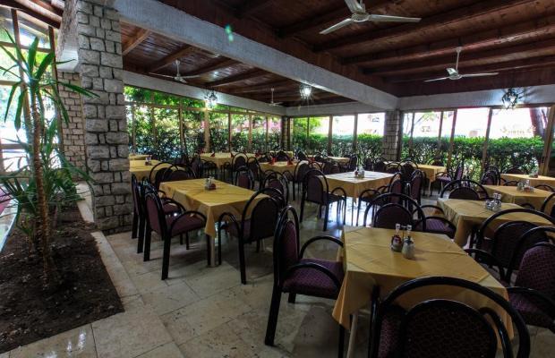 фотографии отеля Hotel Sirena Marta изображение №11