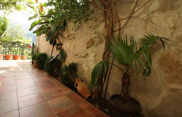 фотографии Villa Bono изображение №8