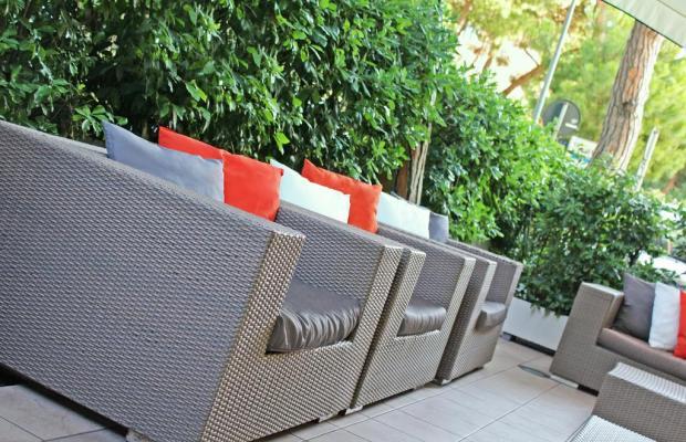 фотографии отеля New Primula изображение №31