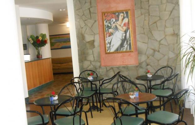 фотографии отеля New Primula изображение №27