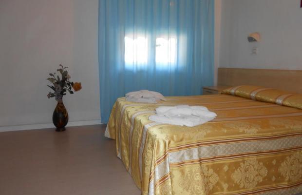 фотографии отеля New Primula изображение №15