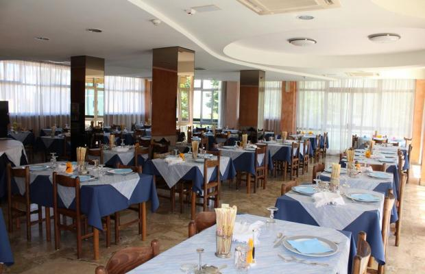 фотографии отеля Ribot изображение №7