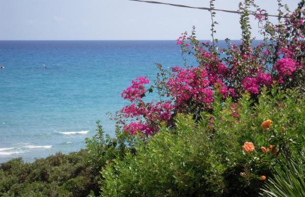 фото Simius Playa изображение №26