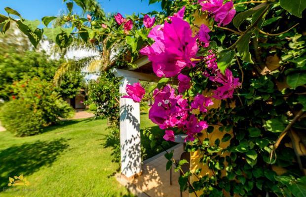 фото отеля Hotel Garden Beach изображение №17