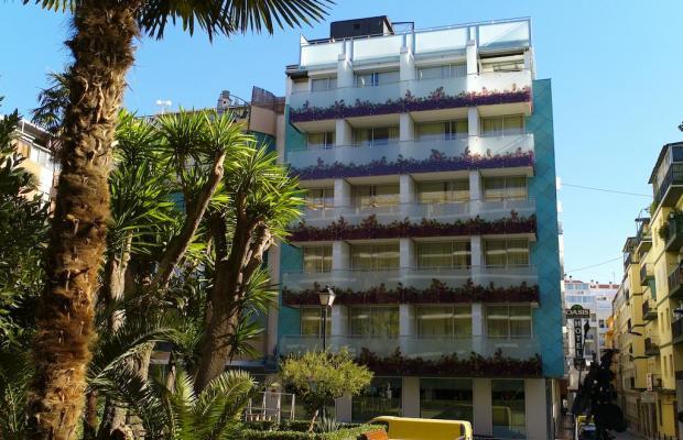фотографии Oasis Plaza изображение №8