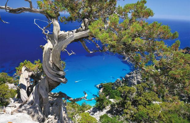 фотографии Arbatax Park Resort Monte Turri изображение №4