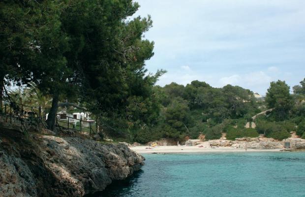 фотографии отеля Barcelo Ponent Playa изображение №11