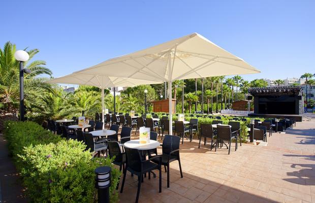 фотографии Hipotels Mediterraneo Club (ex. Blau Mediterraneo Club) изображение №20