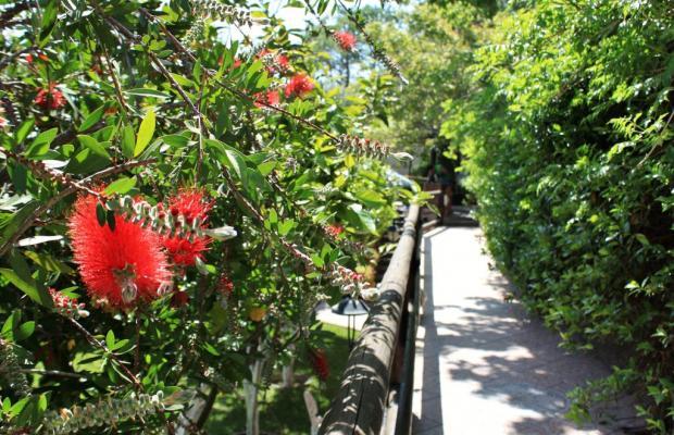 фото отеля Casa Seralba изображение №13