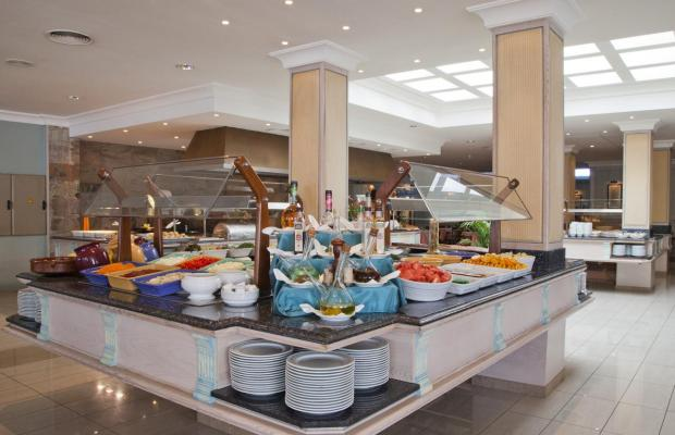 фотографии отеля Grupotel Amapola изображение №19