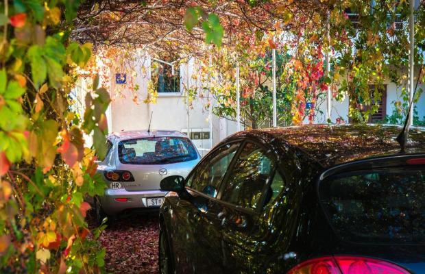 фотографии Apartments Duje изображение №4