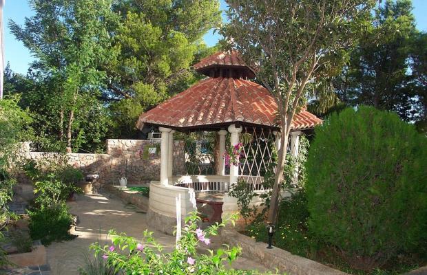 фотографии отеля Villa Vicko изображение №3