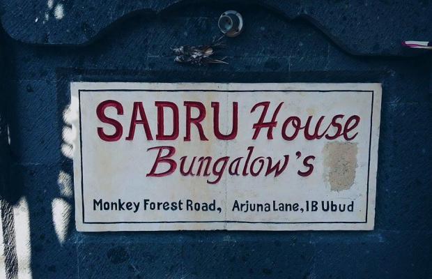 фотографии отеля Sadru House изображение №19