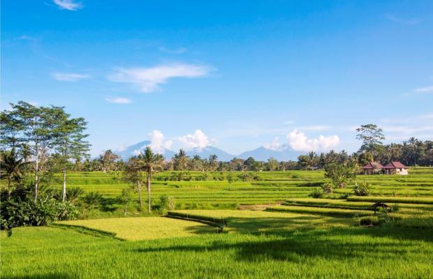 фотографии The Lokha Ubud изображение №4