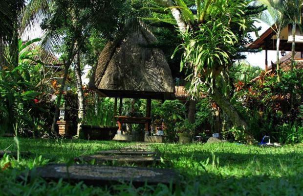 фотографии отеля Garden View Cottages изображение №7