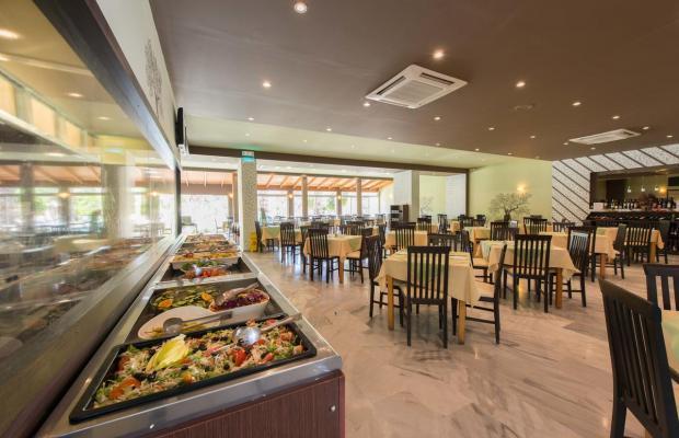 фото отеля Delfinia Resort изображение №5