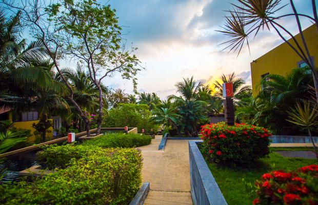 фотографии отеля New Star Beach Resort изображение №7