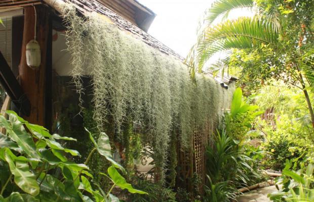 фотографии Bamboo Village изображение №8