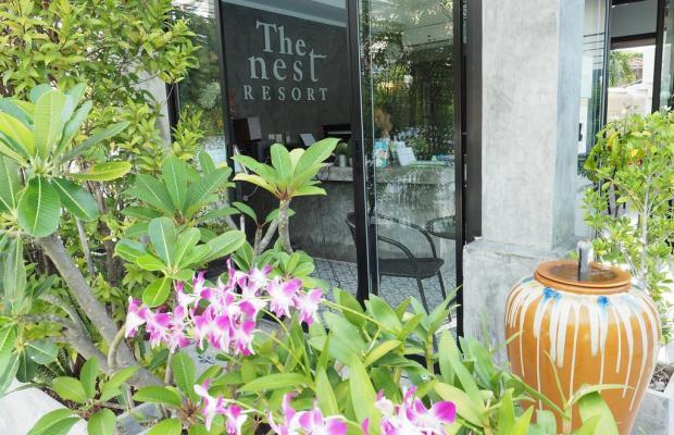 фото The Nest Resort изображение №10