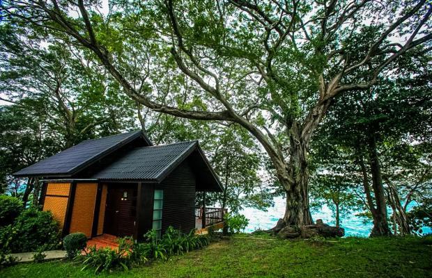 фото Phi Phi Natural Resort изображение №18