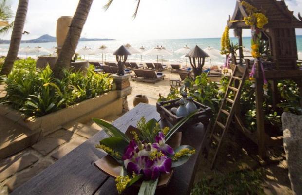 фотографии Thai House Beach изображение №4