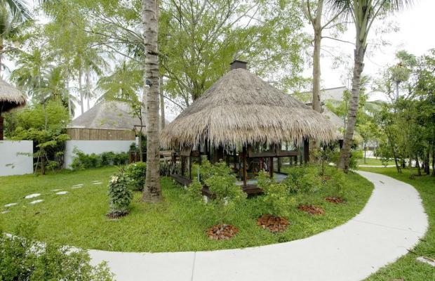 фотографии отеля Mimosa Resort & Spa изображение №23