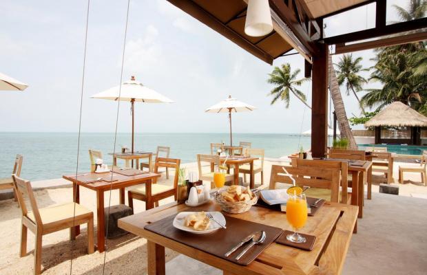 фотографии отеля Mimosa Resort & Spa изображение №15