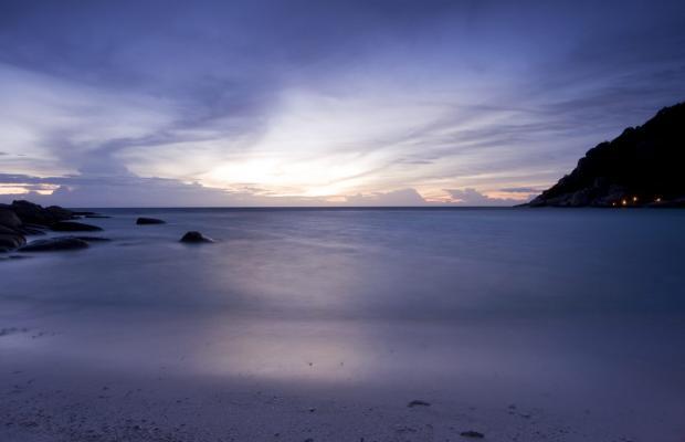 фотографии отеля Nangyuan Island Dive Resort изображение №39