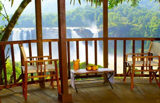 фотографии отеля Rainforest Boutique Resort изображение №19