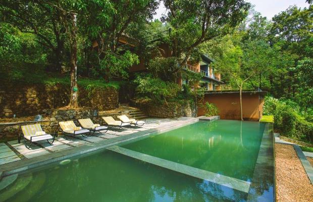 фото отеля Rainforest Boutique Resort изображение №1
