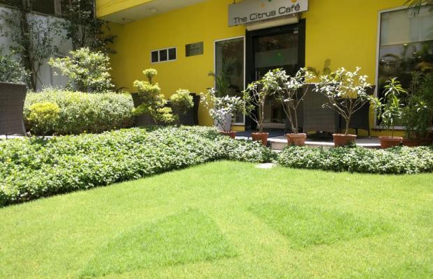 фотографии Lemon Tree Hotel Udyog Vihar изображение №8