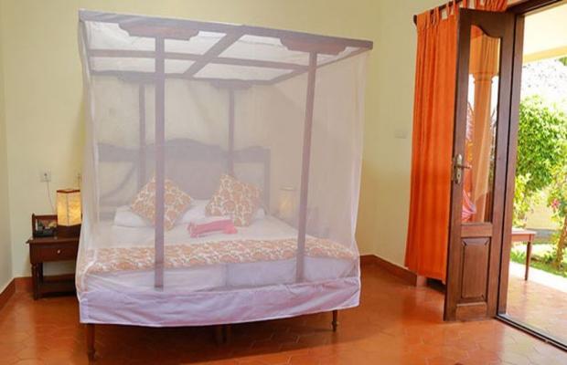 фото Nikki's Nest изображение №2